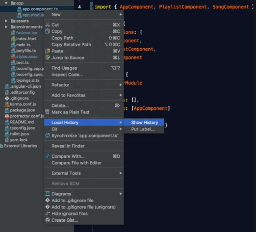 WebStorm Version Download (1)